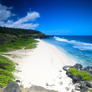 Beautiful white sand tropical beach