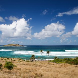 Explore the Magnificent Sandy Shores of St Barts
