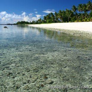 Calm tropical sandy beach