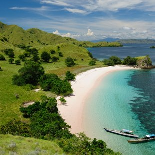 Komodo photo 2