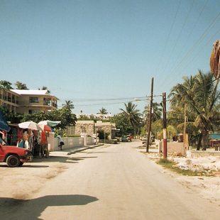 Bimini photo 7