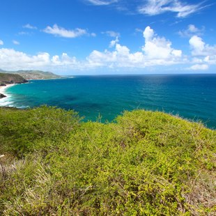 St Kitts and Nevis photo 14