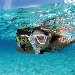 Snorkelling off Norman Island