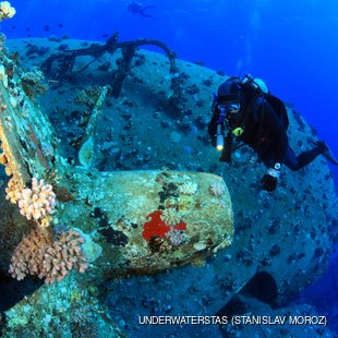Diver with a shipwreck