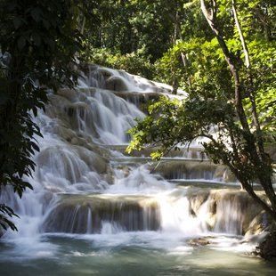 Amazing waterfalls in Jamaican rainforest