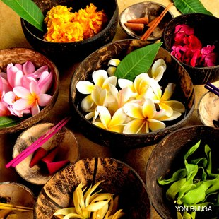 Asian tropical flowers in bowls