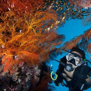 St Croix photo 12