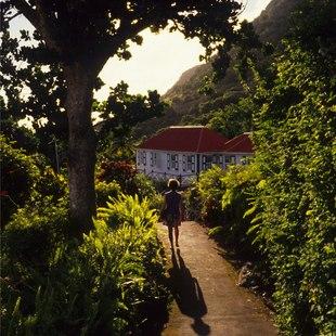 Saba photo 10