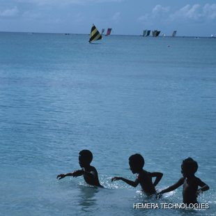 Three boys playing in the sea