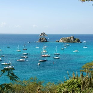 Experience the Most Famous Regatta of St. Barts