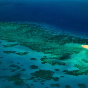 Great Barrier Reef photo 35