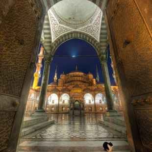 Visit the Blue Mosque Courtyard in Istabul