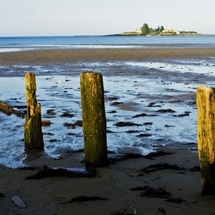 New England photo 43