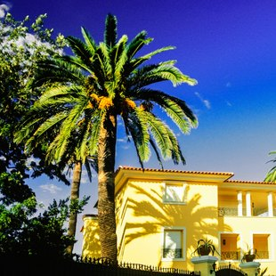 Visit exclusive retreats