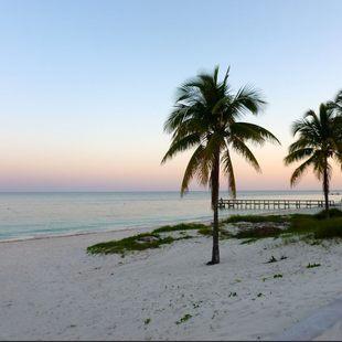 Bahamas photo 36