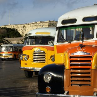 See the Iconic Buses of Malta