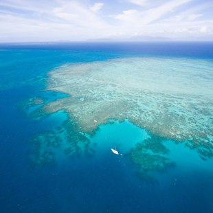 Great Barrier Reef photo 41