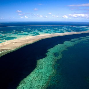 Great Barrier Reef photo 25
