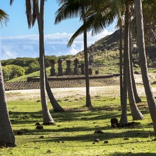 Easter Island photo 17