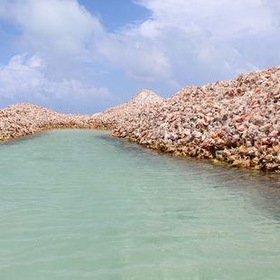 Anegada Island photo 8
