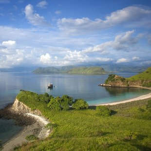 Komodo photo 19