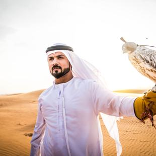 Abu Dhabi photo 31