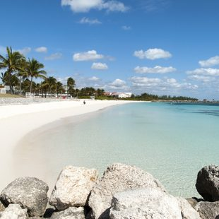Grand Bahama Island photo 9