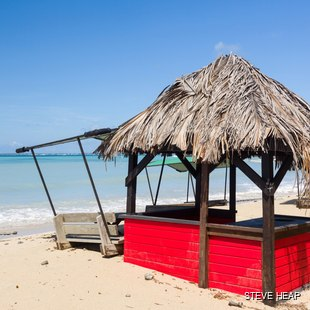 Red buries table on the beach