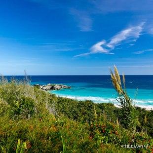 Green Bermudian coastline