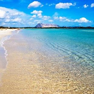 Journey to La Cinta Beach in San Teodoro
