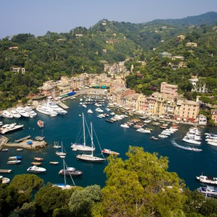 Portofino photo 14