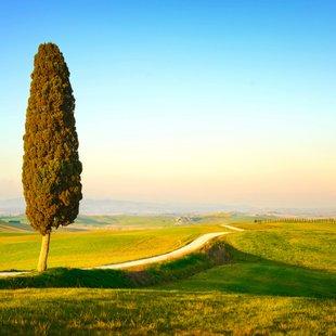 Italy photo 3