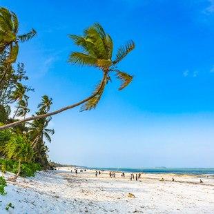 Tanzania photo 3