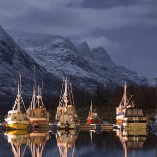 Boats on Fjord