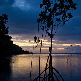 Whitsundays photo 27
