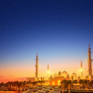Abu Dhabi photo 24