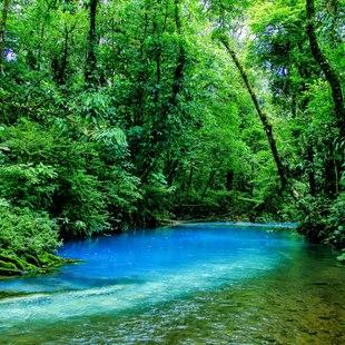 Costa Rica photo 16