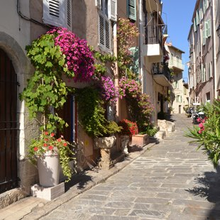 Explore Le Suquet