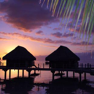 Tahiti photo 17