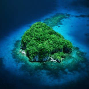 Palau Islands photo 2