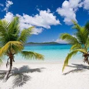 Solomon Islands photo 22