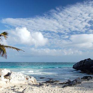 Bahamas photo 42