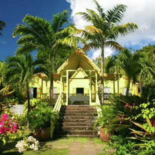 St Kitts and Nevis photo 36
