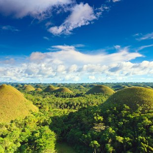 The dream of every child - chocolate hills