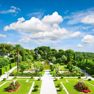 Take a turn around the garden