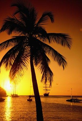 St. Lucia photo 31
