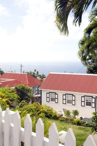 Saba photo 14