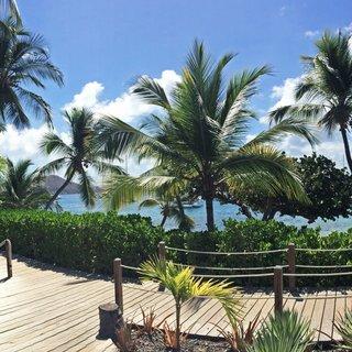 Cooper Island photo 4