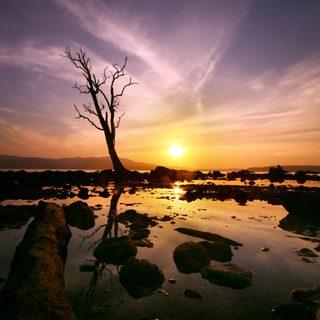 Andaman Islands photo 6