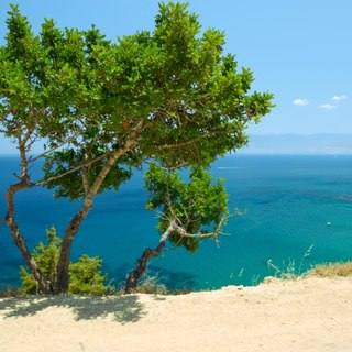 See the Unforgettable Sights of the Akamas Peninsula